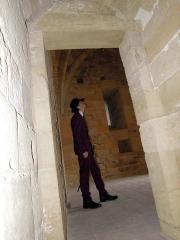Visita al castello di Salemi
